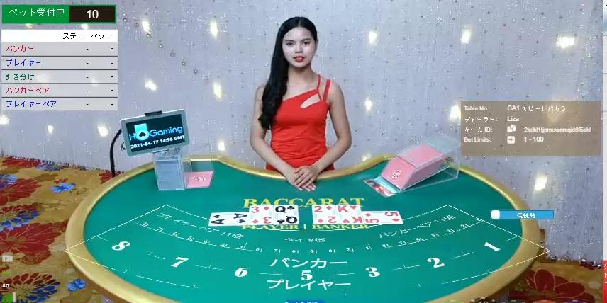 カジノ・シンガポールとは